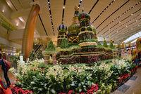 Singapore Changi Airport, Changi Singapore (SIN) photo